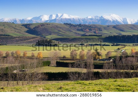 Farm Pasture in New Zealand with paddocks and trees - stock photo