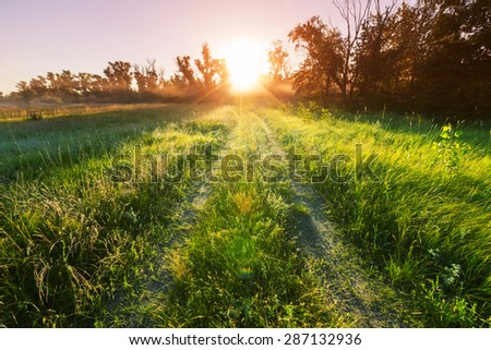Farm road in the meadows - stock photo