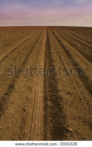 Farm row at dusk with a tractor tire - stock photo