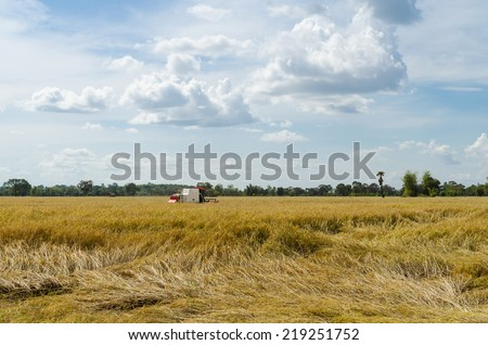 Farm worker harvesting rice with tractor - stock photo