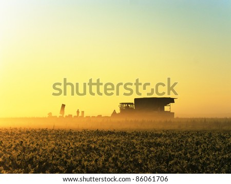 Farm workers harvesting field fruits in early morning during sunrise in Germany (Stuttgart)