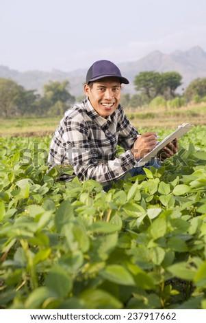 Farmer analyze soybean field - stock photo
