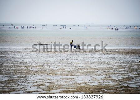 Farmer at seaside - stock photo