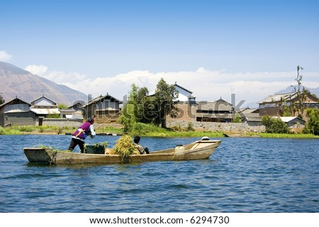 farmer carrying dry wheat by wooden boat after harvesting