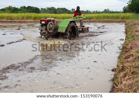 farmer driving original tractor on rice filed - stock photo