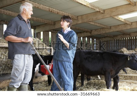 Farmer Having Discussion With Vet - stock photo