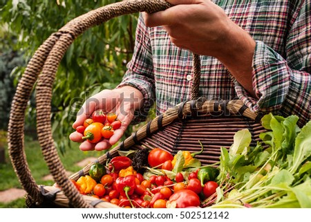 Farmer holding wooden basket and produce in hand