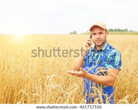 Farmer in a plaid shirt controlled his field. Talking on the phone. Wheat harvest. Agriculture.