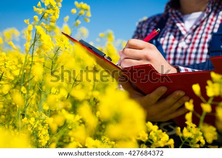 Farmer in inspection of his rapeseed field - stock photo