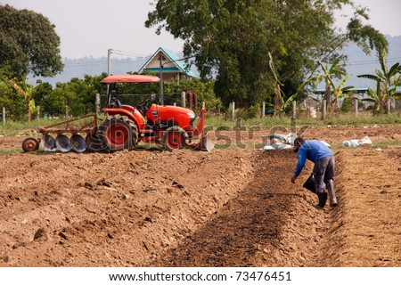Farmer is working in vegetable garden, Thailand - stock photo