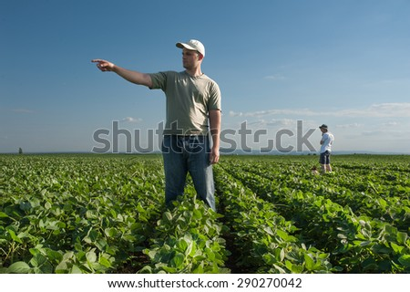 Farmer on the field of soybean - stock photo