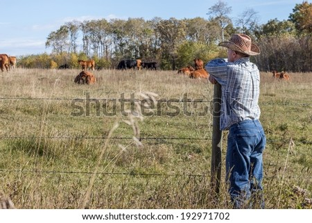 farmer standing by a fence leaning on a fence post watching the cows grazing in the pasture on a summer day - stock photo