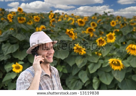 farmer standing in front of a sunflower field talking on the phone - stock photo