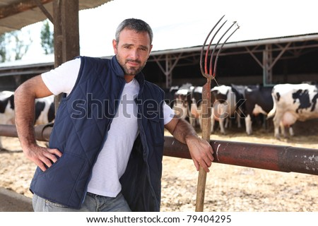 Farmer stood in front of cows - stock photo