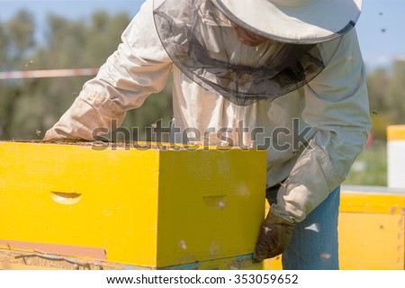 farmer with bee smoker checking a hive with bees