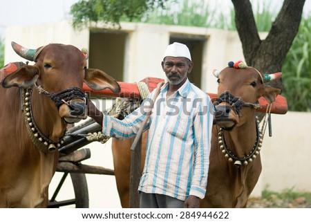 Farmer with bullock cart, rural village, Salunkwadi, Ambajogai, Beed, Maharashtra, India. - stock photo