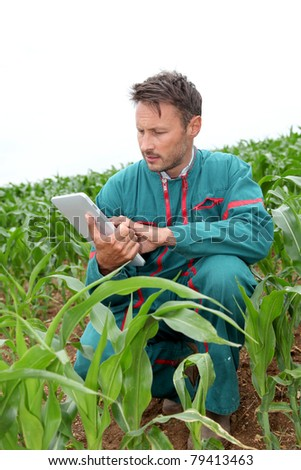 Farmer with electronic tablet analysing corn field - stock photo