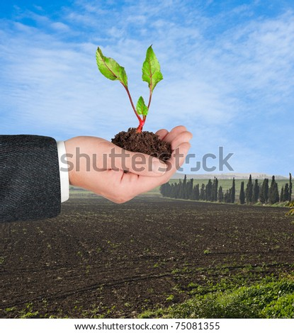 Farmer with sprout of beet in hand