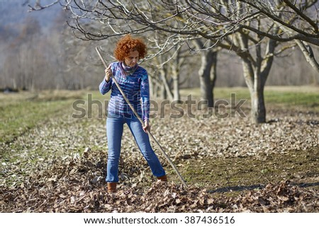 Farmer woman gathering fallen leaves with a rake, spring cleaning in the orchard - stock photo