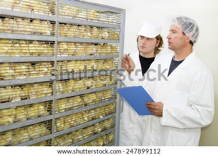 Farmers controlling baby chicken in incubator.Shallow doff - stock photo