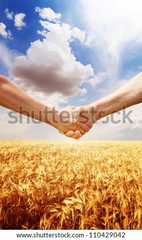 Farmers handshake at wheat field background. - stock photo