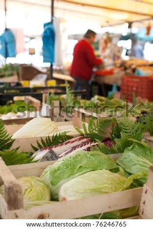 farmers market series - head cabbage (shallow DOF) - stock photo