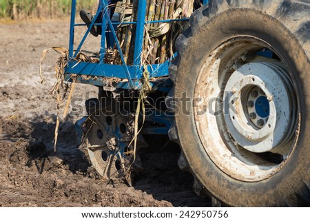 Farmers planting sugarcane field with tractor - stock photo
