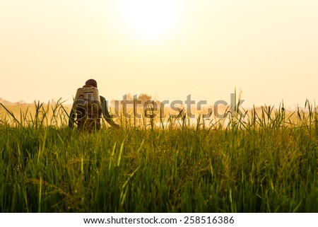 Farmers spray herbicide in rice leaves with dew catch the morning sun. - stock photo