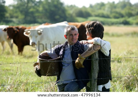 Farmers standing in a cattle field