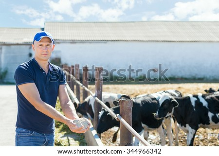 farmers with feed for cows in the hand - stock photo