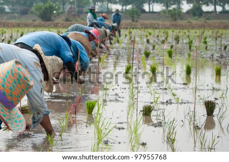Farmers working in plowed field