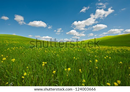 Farmhouse and Green Sloping Meadows of Tuscany - stock photo