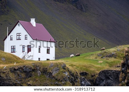 Farmhouse and sheep grazing in remote parts of Iceland - stock photo