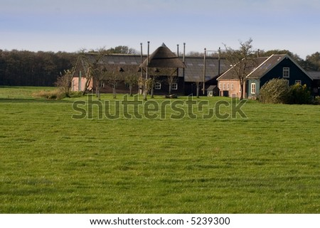 Farmhouse in the Netherlands