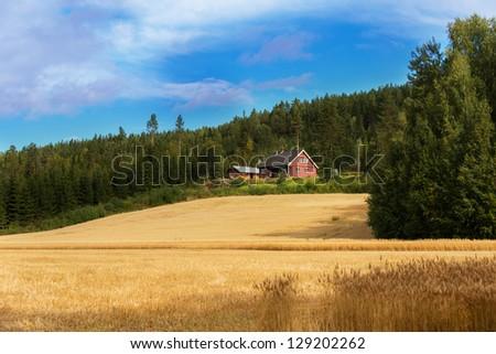 Farmhouse on edge of forest - stock photo