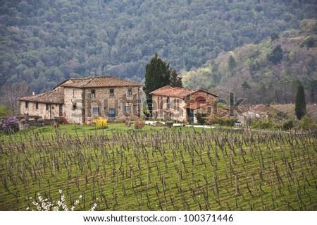 farmland and countryside in Chianti, Tuscany, Italy - stock photo