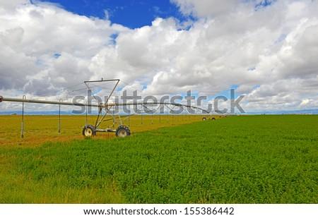 Farmland in America - stock photo