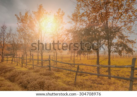 Farmland in autumn sunset