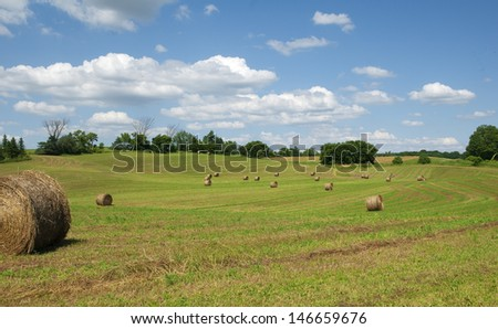 farmland in summer with blue sky and clouds - stock photo