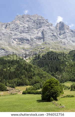 Farmland in the Alps in Switzerland - stock photo