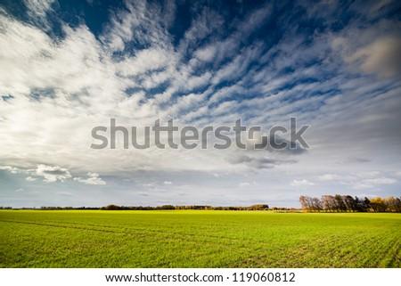 Farmland -  landscape of autumn in Lithuania. - stock photo