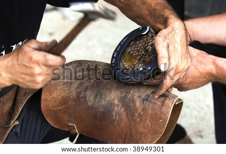 Farrier attaches horseshoe to the hoof with nails - stock photo
