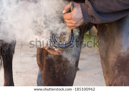 Farrier/blacksmith  in close up shot as he fits red hot shoe to horses hoof. - stock photo