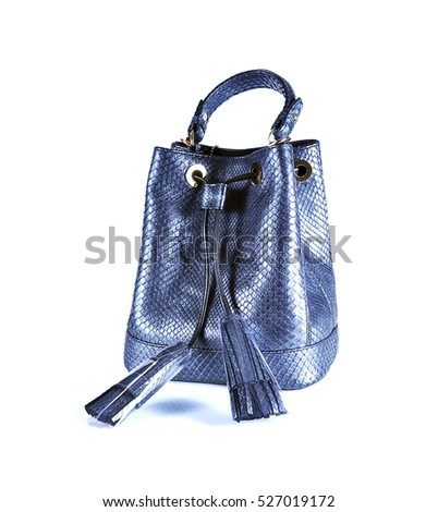 fashion bags animals skins on background