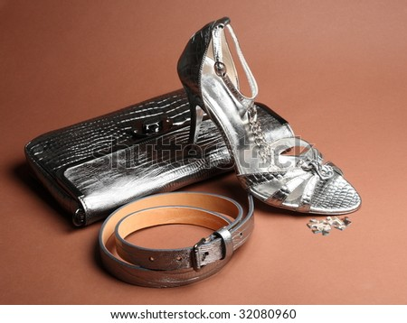 fashionable silver clutch, belt and elegance shoe - stock photo