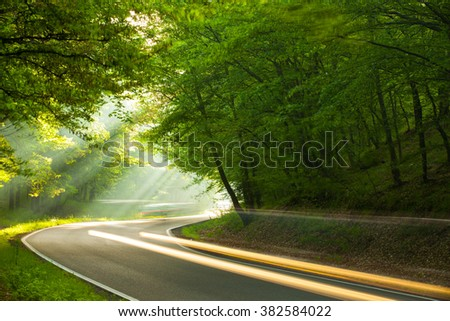 Fast cars on the road in forest in the morning - stock photo