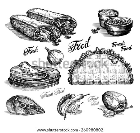 fast food. burritos and tacos on white background. sketch - stock photo