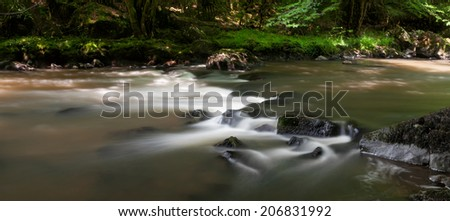 Fast forrest stream France. - stock photo