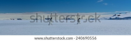 Fast Ice, Fast Penguins: Active Sound, Antarctica - stock photo