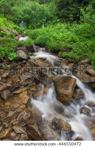 Fast river in the summer forest. Beautiful natural landscape in the summer time